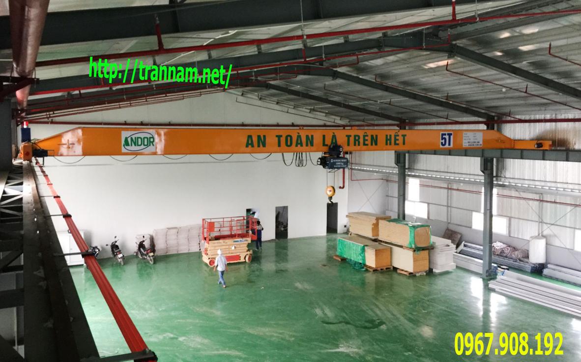 Lắp đặt cầu trục 5 tấn tại Phú Thọ
