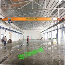 Cầu trục dầm đơn 3 tấn – tại Hà Nam