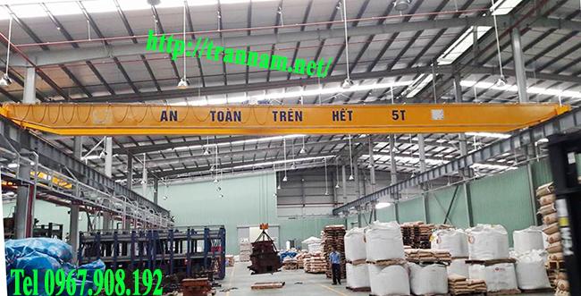 Lắp cầu trục 5 tấn tại Ninh Bình, Nam Định, Thái Bình