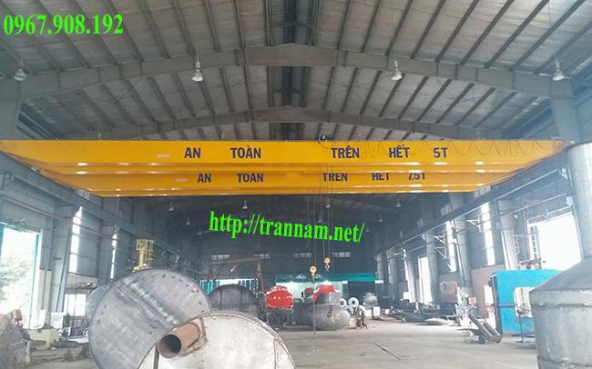 Lắp cầu trục 5 tấn dầm đôi tại Hưng Yên