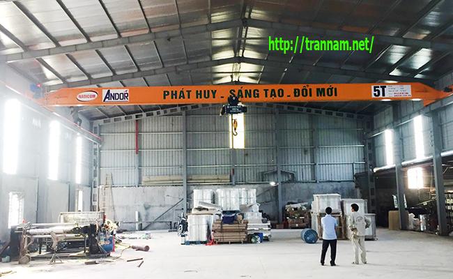 Lắp cầu trục treo 5 tấn tại Nam Định