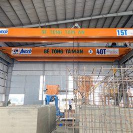 Cầu trục dầm đôi 15 tấn. D-15T SungDo