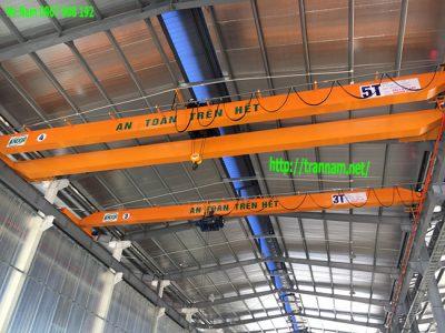 Cung cấp cầu trục dầm đôi tại Hà Nội