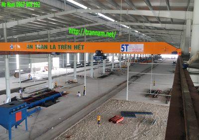 Cầu trục dầm đơn 5 tấn tại Thái Bình