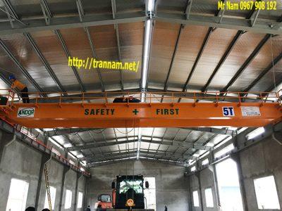 Cầu trục 5 tấn dầm đôi chất lượng