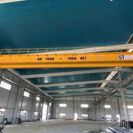 Cầu trục dầm đôi 5 tấn chất lượng