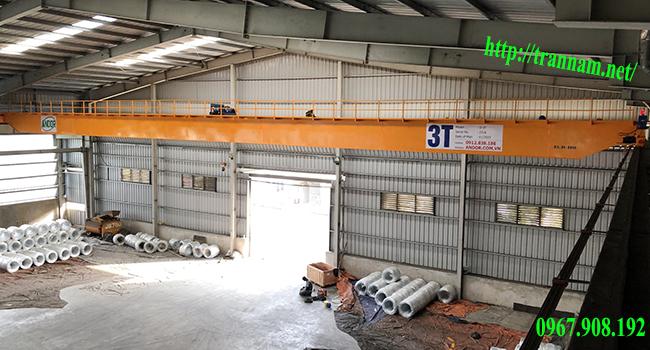 Cầu trục đôi 3 tấn tại Hưng Yên
