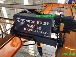 Cung cấp cầu trục dầm đôi 7,5 tấn tại Thanh Hóa