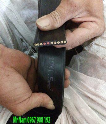 Cáp điện dẹt 10Cx1.5mm